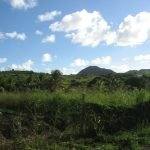 Antigua Countryside