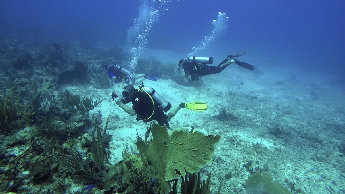 Divers learn to take underwater pictures in Antigua