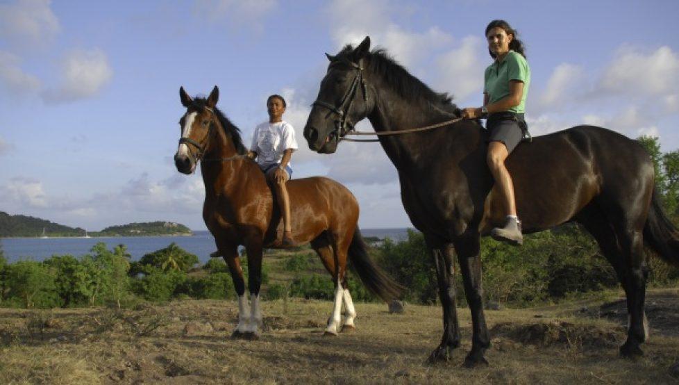 horse-riding-antigua